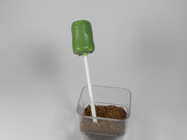 Cake Pops di Halloween: Frankenstein-Rivestire il Marshmallow con il Cioccolato
