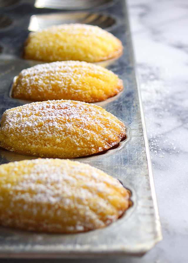 Biscotti Cake Design Ricette : Madeleines   Happy Cakes To You - Ricette di dolci ...